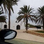 dos palmeras en la playa